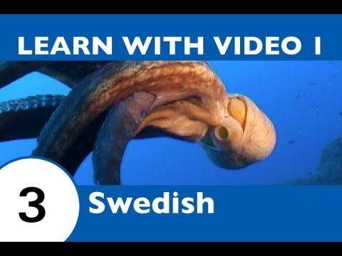 Learn Swedish with Video - SwedishPod101 Will Help Keep You Afloat with Marine Life Vocabulary!