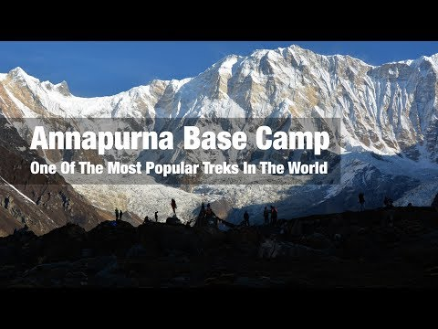 Why Annapurna Base Camp Is One Of The Most Popular Treks In The World