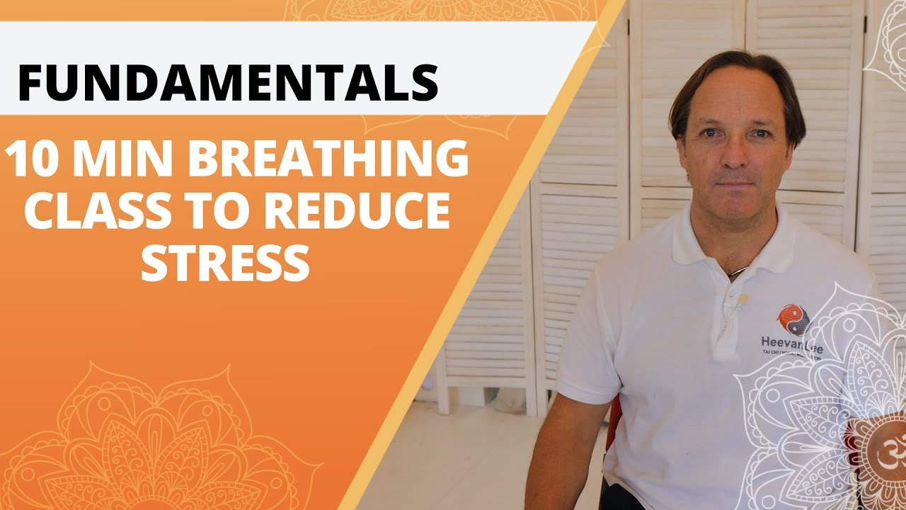 Fundamentals | 10 Min Belly breathing to reduce stress