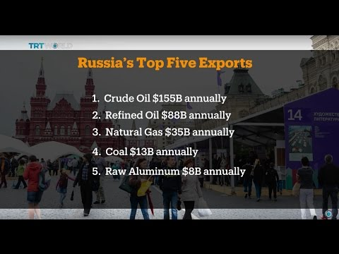 Money Talks: India and Russia strengthen trade ties, interview with Yaroslav Lissovolik
