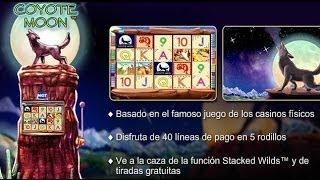 Juegos tragamonedas gratis casino solera casino microgaming new online