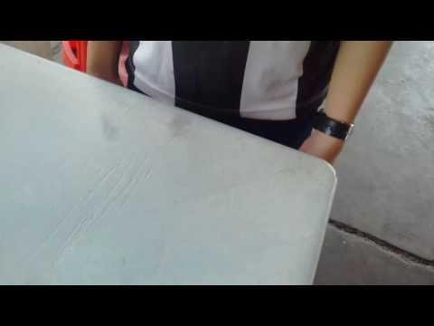 榴莲树林1 指尖陀螺