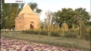 Уникальные памятники: мавзолей Айша-Биби