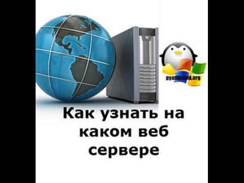 Как узнать на каком веб сервере работает сайт