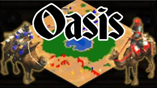 AoE2 Game Sense At Its Finest! Saracens vs Berbers!