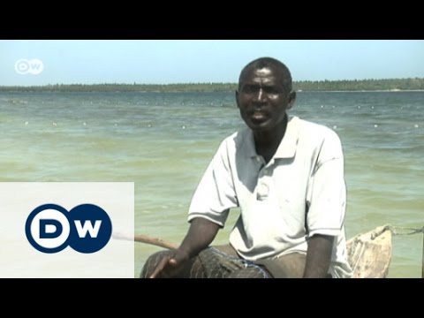 Mida Creek - Kenya's tidal inlet under threat | Eco-at-Africa
