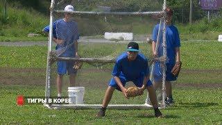 Бейсбольный клуб «Тигры» выступил на юношеском чемпионате мира в Корее