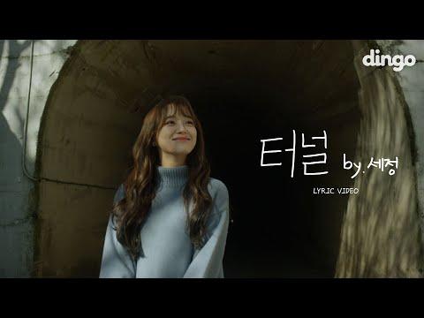 [ENG SUB] 세정 (SEJEONG) '터널 (Tunnel)' Lyric Videoㅣ리릭비디오   4Kㅣ딩고뮤직ㅣDingo Music