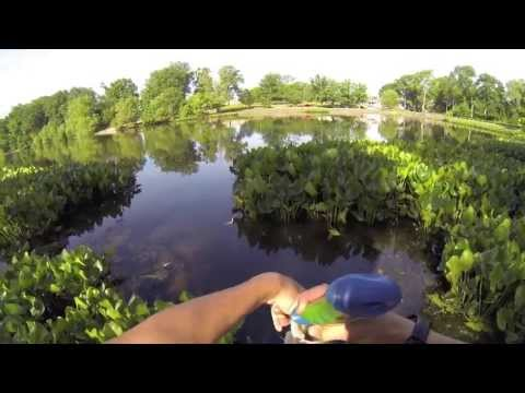 12 Lb Limit Bass Fishing At Haddon Lake In NJ