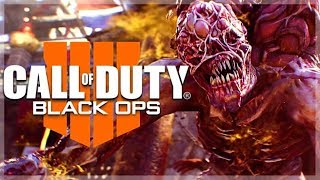 BEST PLAYER NA /s | Call of Duty Black Ops 4 BATTLE ROYALE Solos