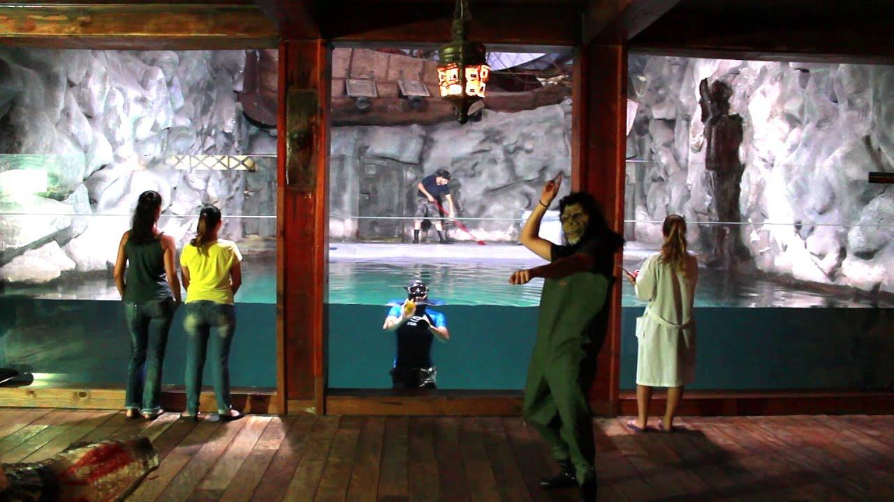 Harlem Shake no Aquario de Sao Paulo! - YouTube