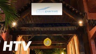 Hotel Blue Parrot 5th Avenue en Playa del Carmen