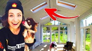 Построили стеклянную комнату! Румтур: собаки и кошка в новой комнате! Купили свет для дома и сада!