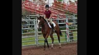 My Horse Back Riding Story