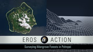 Surveying the Mangrove Forests of Pohnpei
