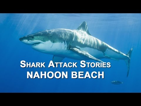 TWO SHARKS ATTACK SURFER AT NAHOON BEACH, SOUTH AFRICA