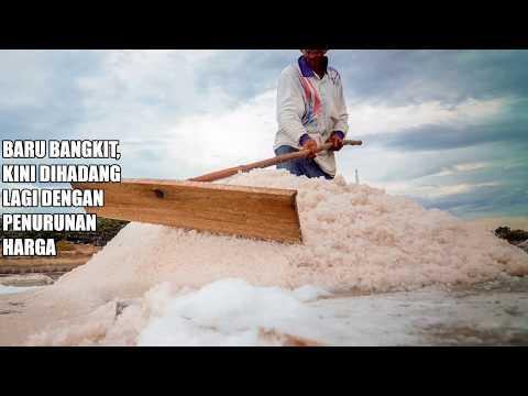 Baru Bangkit dari Bencana Tsunami, Kini Dihadang Penurunan Harga garam