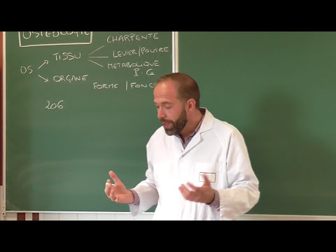 Cours d'ostéologie générale