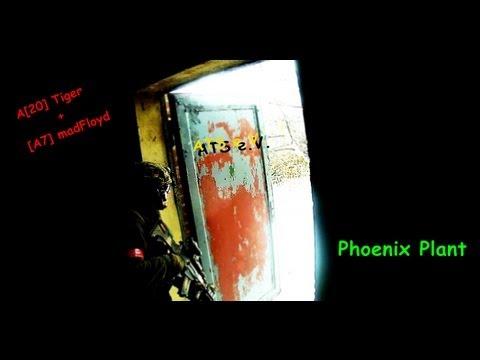 Phoenix Plant 22.12.12