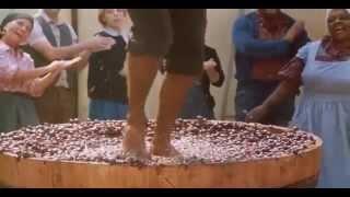 Укрощение строптивого  (1980). Смотреть онлайн русский трейлер к фильму