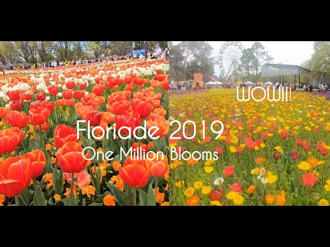 Floriade 2019 Full Walking Tour Australia's Biggest Celebration of Spring Canberra ACT