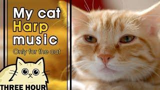 [MY CAT HARP MUSIC] 고양이의 밤을 위한 하프 음악 (ねこハーフおんがく,cat lullaby)