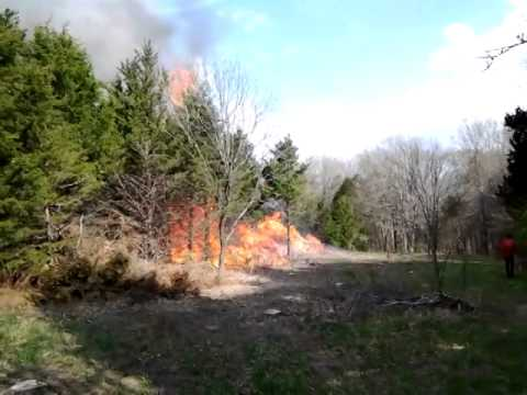 Prescribed burn - the head fire...