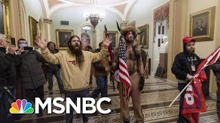 Lawyer For Capitol Rioter Appeals For A Pardon From President Trump | Ayman Mohyeldin | MSNBC