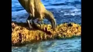 Megalodon vs liopleurodon vs mosasaurus by Diego