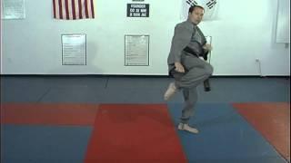 Hapkido Basic Kicks 16 thru 20, Ji Han Jae