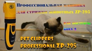Машинка для стрижки животных ZP-295 кошек собак | Pet clippers  professional zp-295 Aliexpress