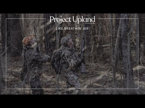 Hunting Squirrels with Dogs - Like Breathin' Air - Project Upland Magazine