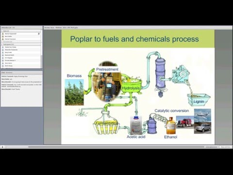 Webinar: Converting Hybrid Poplar to Biofuels and Biochemicals
