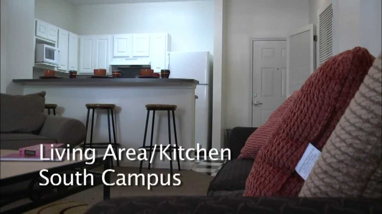 South Campus 4 Bedroom 2 Bath Youtube