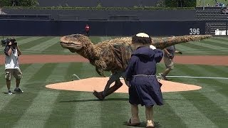 Repeat youtube video Baby T-Rex throws out ceremonial first pitch