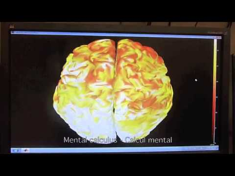 Real-time Brain Imaging with Visual Biofeedback