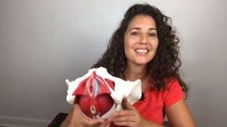 Anatomy of A Yoni: Explore Your Pelvic Floor with Michelle Alva, Pelvic PT
