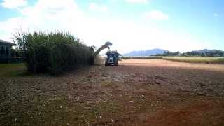 Cane Harvester operating in Innisfail North Queensland