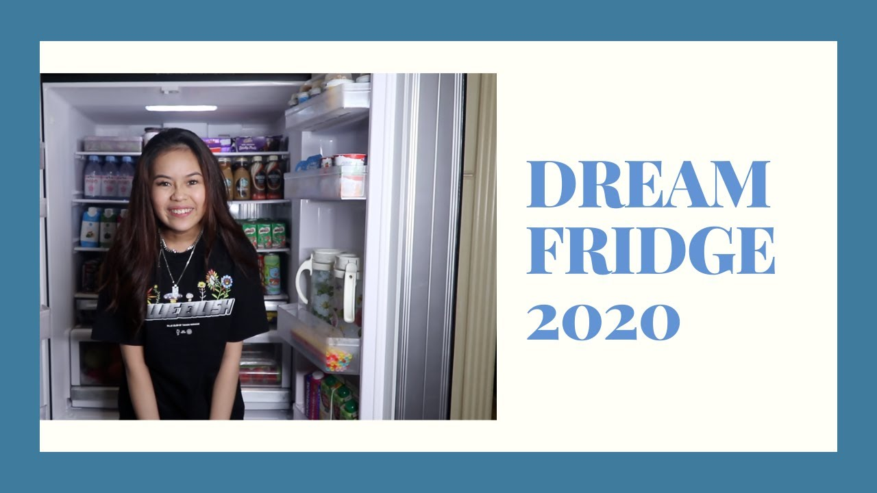 OFFICIAL DREAM FRIDGE TOUR 2020