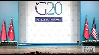 Cats crash the G20 Summit!