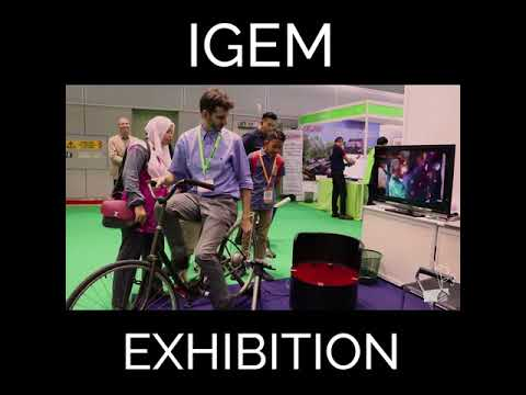 Energy Playground at the International Green Tech and Eco-product Exhibition