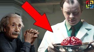 আইনস্টাইনের ব্রেন 64 বছর লুকিয়ে রেখেছিল এই বিজ্ঞানী। What Happened To Albert Einstein's Brain?