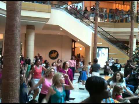 International Plaza Tampa Flash Mob 7/16/11