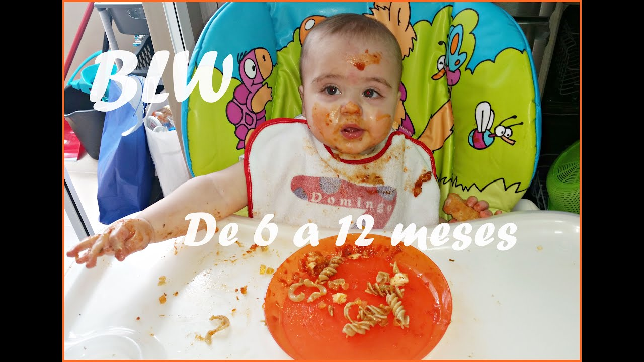 Blw 6 Meses Blw Baby Led Weaning 6 Meses Con Blw Nuestra Opinión