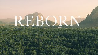 Finding Favour - Reborn (Official Lyric Video)