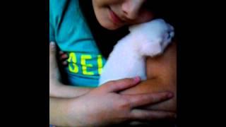 Я скучаю по тебе котик :'(