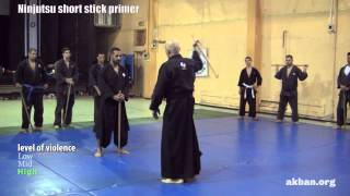 Ninjutsu 'Stick fighting' basics - Hanbo training for the AKBAN wiki