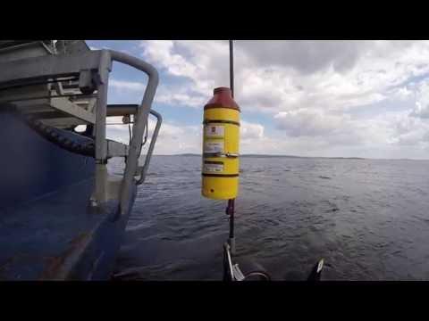 Towfish tracking