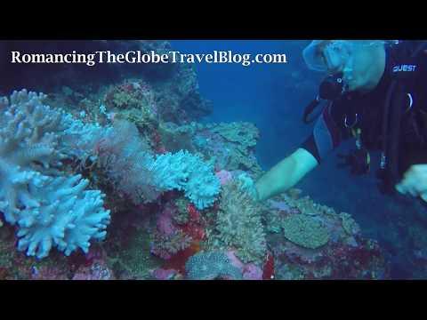 Magic Coral, Fiji - Romancing The Globe Travel Blog
