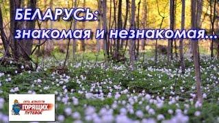 Туры в Беларусь - недорогие автобусные туры без виз(Откройте для себя очарование Беларуси! Рассказ о туре